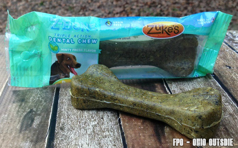 Road Trip Essentials For Your Dog