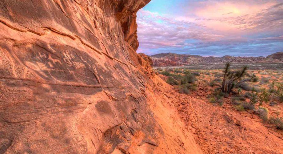 Gold Butte National Park