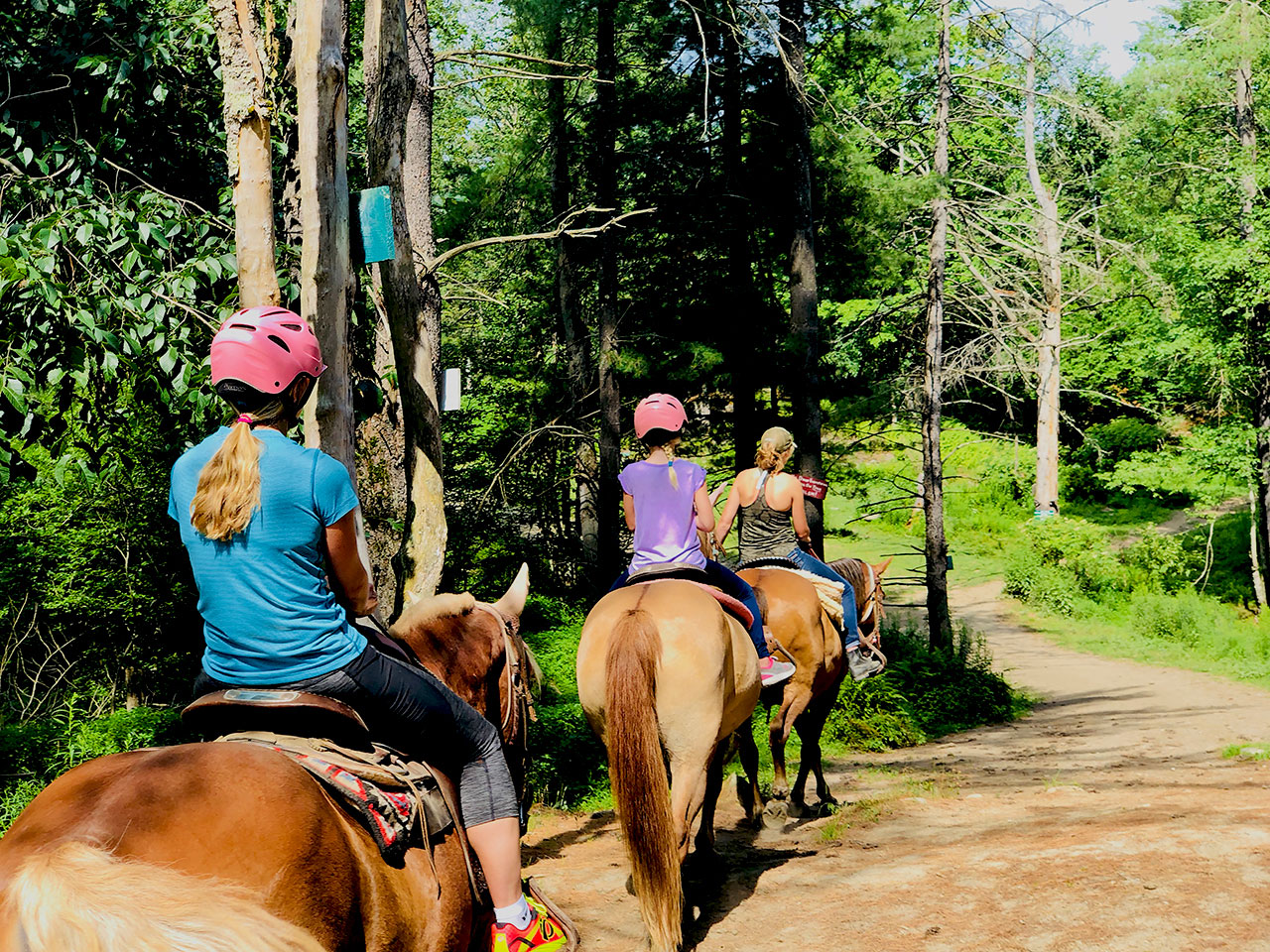 Horseback Riding in Vermont