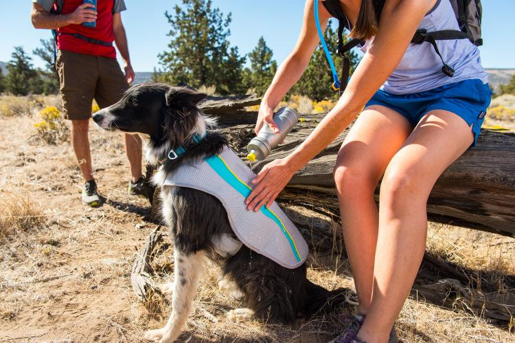 Ruffwear Jet Stream Cooling Vest for Dogs
