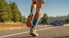 Smartwool PhD Pro Endurance Sock