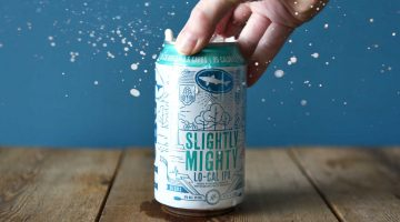 Dogfish Head Slightly Mighty Beer