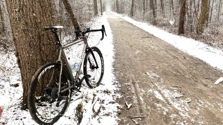 Moots in Winter