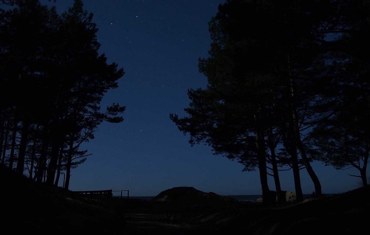Global Sleep Under The Stars Night
